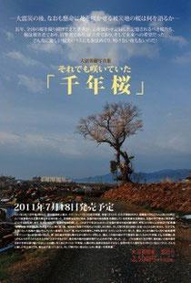 千年桜 大沼英樹