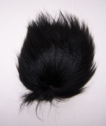 Black Foxtail