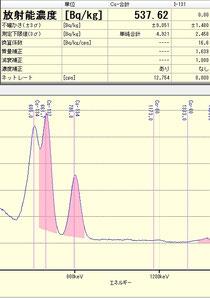 千葉県柏市採取の椿の花537Bq/kg
