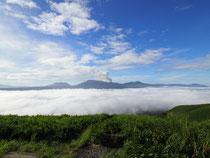 秋は雲海出現率が高い季節です!阿蘇の大観峰展望所の雲海ライブカメラをチェックしてぜひ早朝ドライブへ♪
