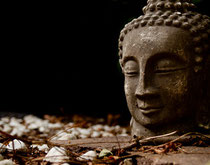 Meditation als Medizin