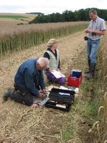 Wiesenweihenschützer beim Vermessen und Beringen von Jungvögeln: Claudia Pürckhauer (Mitte) und Karl-Heinz Geier vom LRA Main-Tauber-Kreis (rechts). (Foto: M. Nuß/NABU)