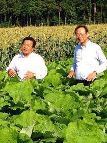 千葉の農業生産者を視察