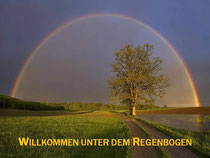 __________www.dichsein.ch__________