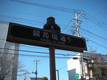 東京競馬場への道その1,競馬場通り