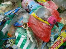 こんなにたくさんのゴミが集まりました