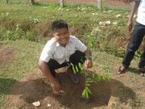 木を植えるのは楽しいです!