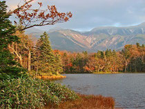 紅葉の知床五湖は印象派絵画の世界