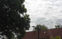 Schule Hollingstedt
