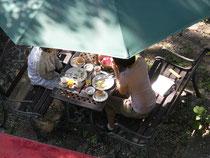 お庭のテーブル席