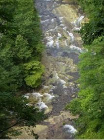 奥志賀渓谷(雑魚川)の     グリーンタフ