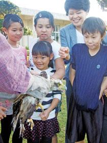 平久保小学校でカンムリワシの若鳥が放鳥された=22日午前、同校