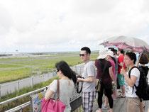 見学台から新石垣空港を視察する一行