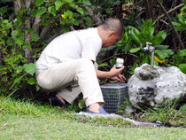 人工島で猫を捕獲するための檻を設置する佐上理事長