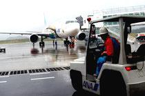 定期便で初の中型機が就航。「ゆめジェット」デザインの機体に、さっそく貨物が運び込まれた=31日午後3時半過ぎ。新石垣空港