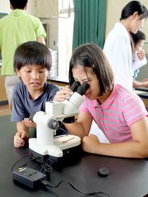 顕微鏡でユーグレナやクロレラを観察する児童たち=5日午前、大本小学校