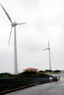 与那国島で行われている風力発電(2011年11月の与那国島マラソン時)
