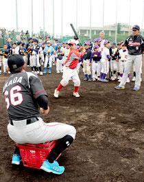 少年野球教室でバッティング指導をする千葉ロッテマリーンズの選手。子どもたちは懸命にバットを振った=8日午後、石垣市中央運動公園野球場