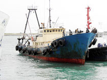 タグボートに横抱きにされて入港した香港活動家の抗議船=16日午後4時半ごろ