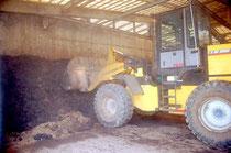 指定管理者の運営状況にD評価が2項目あった石垣島堆肥センター。決算の改善などが求められている(資料写真)
