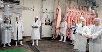 JA石垣牛肥育部会枝肉共励会が開かれた=22日午前、八重山食肉センター