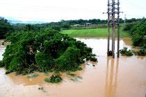 大雨で冠水した赤土橋近くの土地
