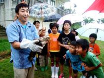カンムリワシの幼鳥は児童たちに「よんな」と名付けられた=13日午後、大本小学校