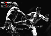 WE LOVE MMA - Hamburg - O2 Arena