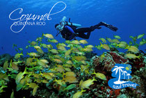 COZUMEL_AZUL_TRAVEL