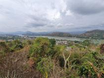 ganz schön dschungelig rund um den Mekong!