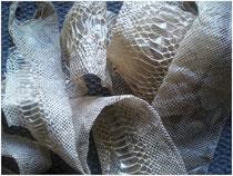 hadí košile (svleklá kůže hada)