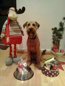 Der Nikolaus war da (6.12.2013)
