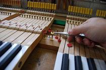鍵盤ならし