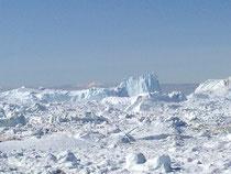 Ilulissat - Baie de Disko