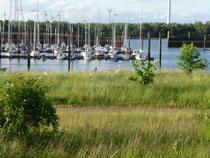 Yachthafen Hasenbüren