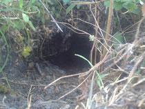 Une caverne creusée par un géant,