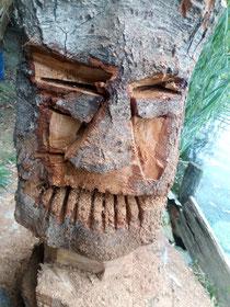 Le gardien sacré des druides (la tête à Toto).