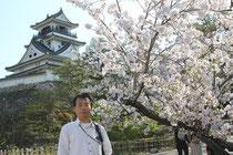 高知城の二ノ丸の桜と天守閣