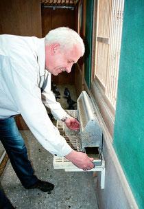Alle Schläge sind mit der Geraldy-Alutränke ausgestattet. Die Tauben erlernen hier frühzeitig die Wasseraufnahme, ähnlich wie im Kabinenexpress.