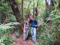 unterwegs im Regenwald