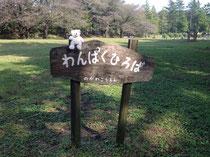 野川公園わんぱく広場♪