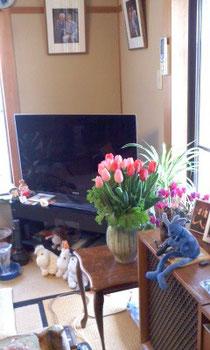 春はもうすぐそこですね♪
