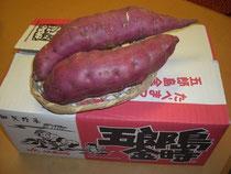 五郎島金時サツマイモ