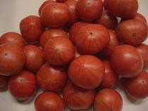 加賀産フルーツトマト
