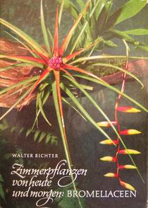Das Bromelien-Buch von W. Richter (4. Aufl. 1978)