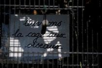 """entdeckt in einem französischen Garten: """"Öffnen wir den Käfig für die Vögel.."""", damit sie fliegen können"""