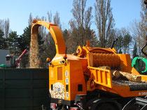 Production de plaquettes forestières par broyage