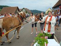 Pferdesegnung 2009