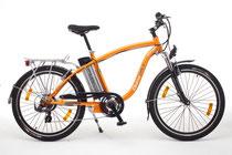 ebike elektische fiets fietsarrangement
