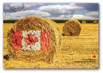 (c) Canada Post